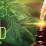 How to Buy CBD – 5 Key Questions you Should Ask Before Buying!
